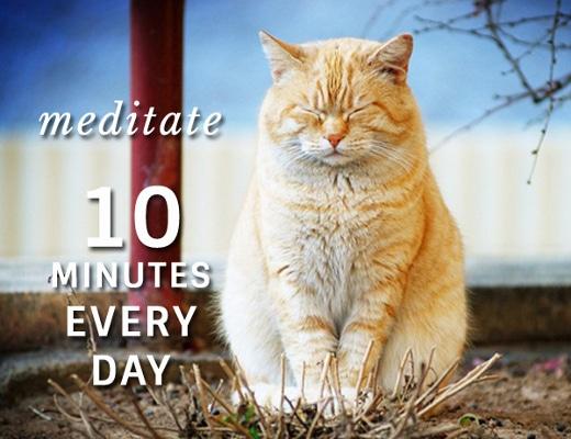weekly Meditation Practice